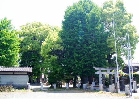 20140511王城神社_1.jpg