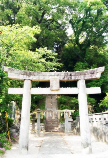 日吉神社20141_1_1.jpg
