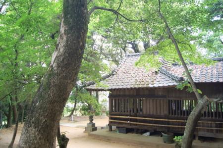 日吉神社20146_2_1.jpg