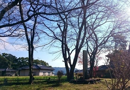 横岳崇福寺 毘盧庵(びるあん)跡 - コピー.JPG