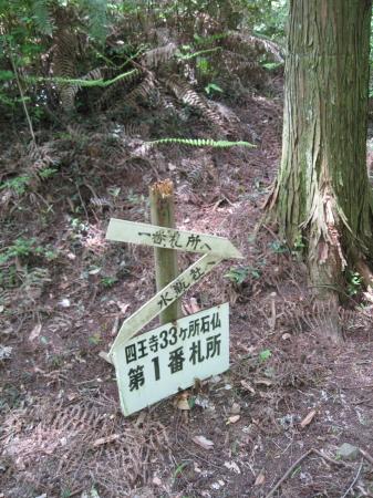 ichiban3_1.jpg