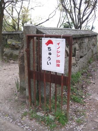 iwayajyoato28.jpg