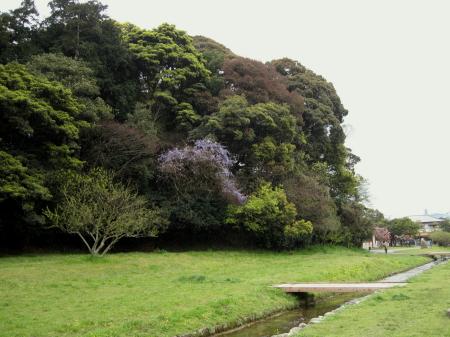 yamafuji1.jpg