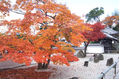 2013光明禅寺秋5_1.jpg