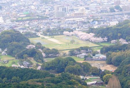 2014大野城跡桜5_1.jpg