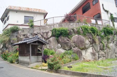 2014稲子2_1.jpg
