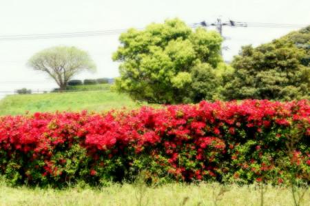 水城2013041710_1.jpg