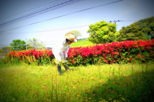 水城2013041711_1.jpg