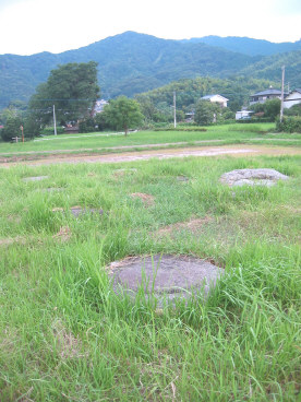 kokubunji2.jpg