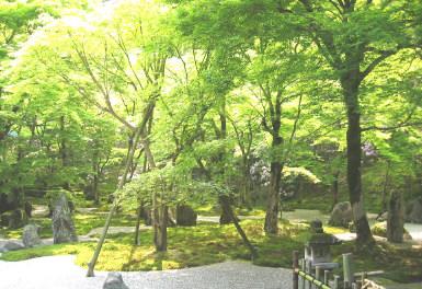 komyozenji3.jpg
