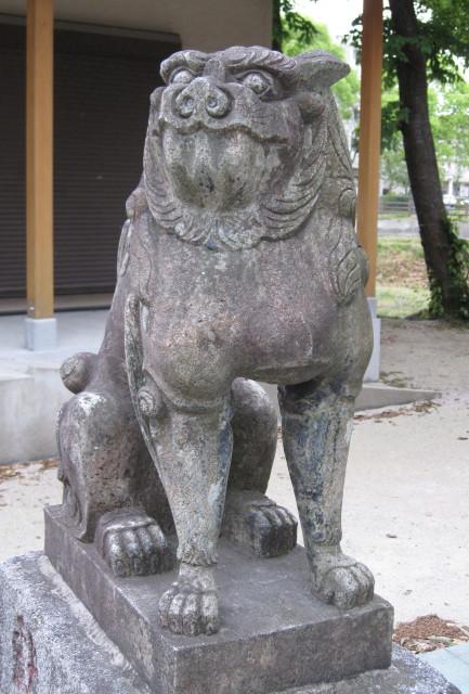 oimatsukoma17_1.jpg