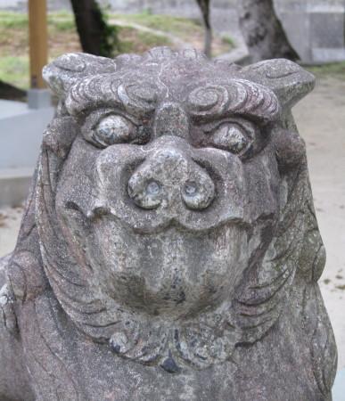 oimatsukoma19_2.jpg