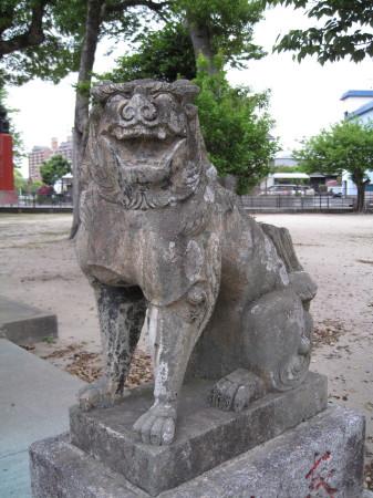 oimatsukoma9.jpg