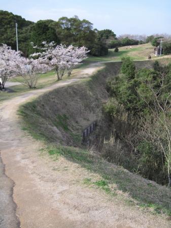 siojisakura1.jpg