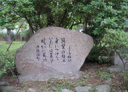 syamimansei2.jpg