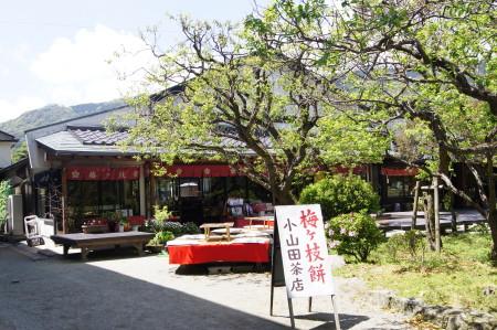 小山田茶店3_1.jpg