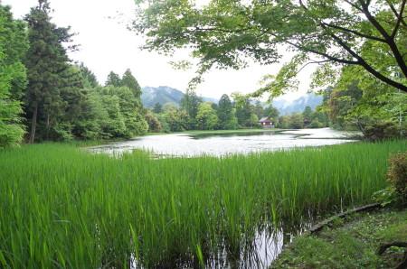麻生池3_1.jpg